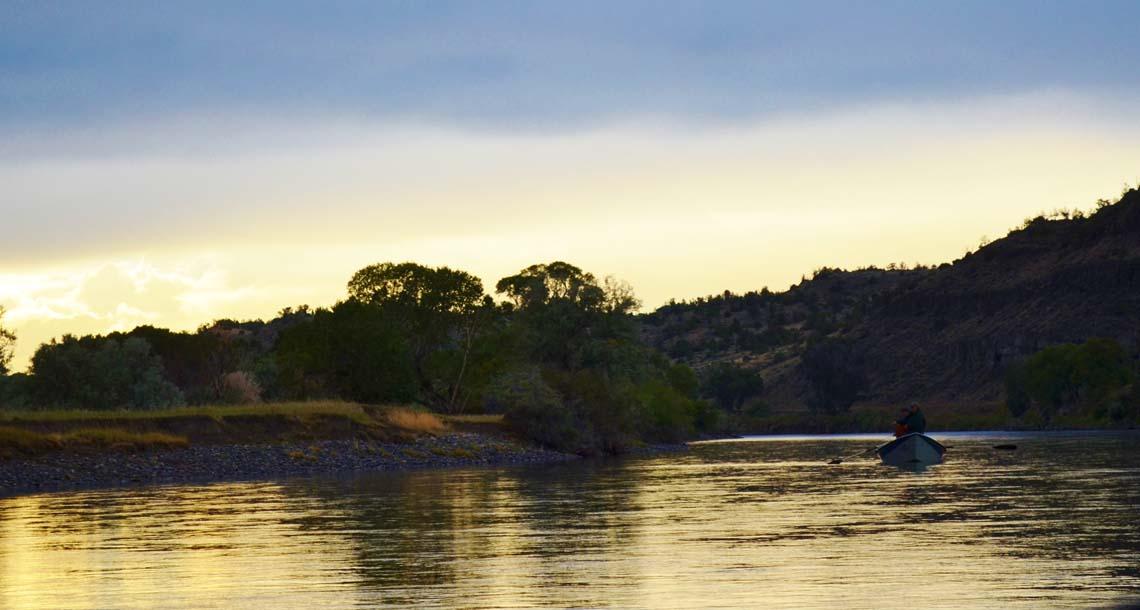 Yellowstone river fishing report montana fishing company for Montana fish company