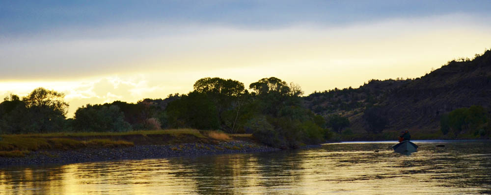 Yellowstone River Fly Fishing, Guided Montana Fly Fishing Trips